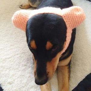 Ear warmer3