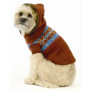 Winter Fashion Trends For Your Pet Dog