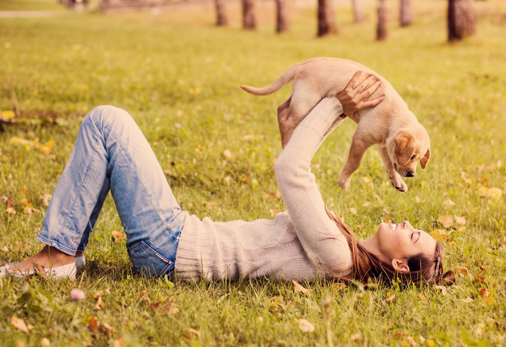 Health benefits of having a dog-no.5