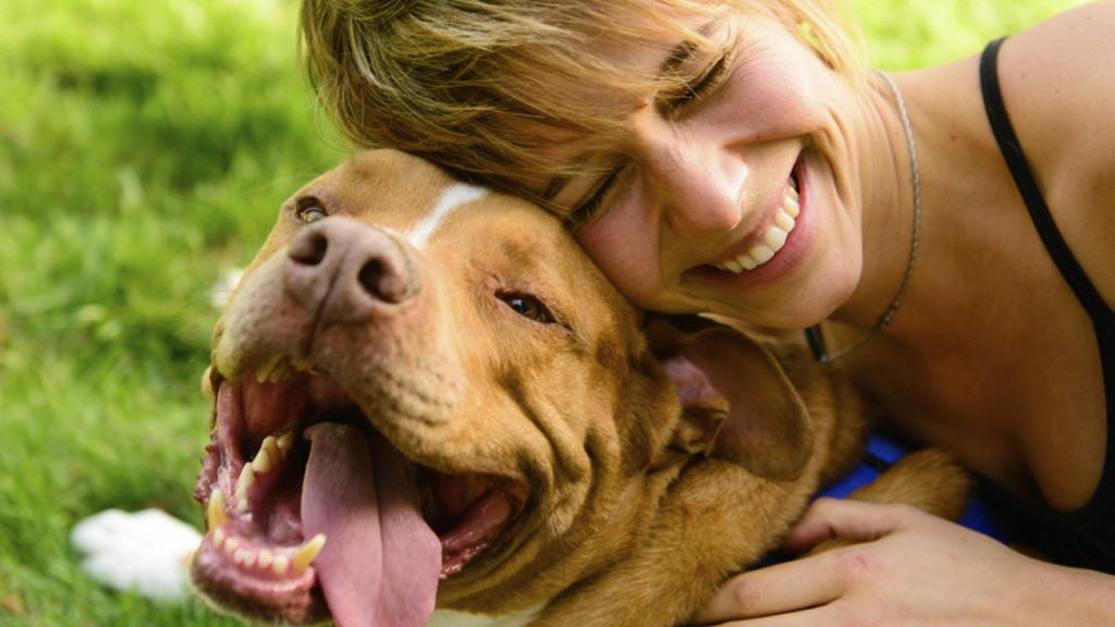 Health benefits of having a dog-no.7