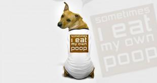 dog-eating-poop