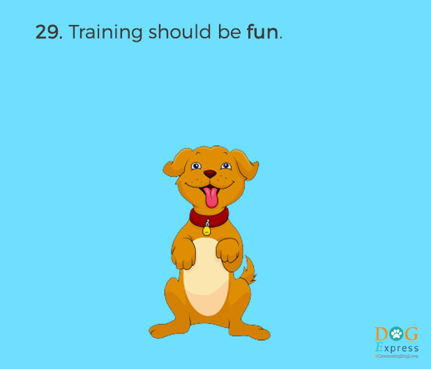 Dog-training-tips-29