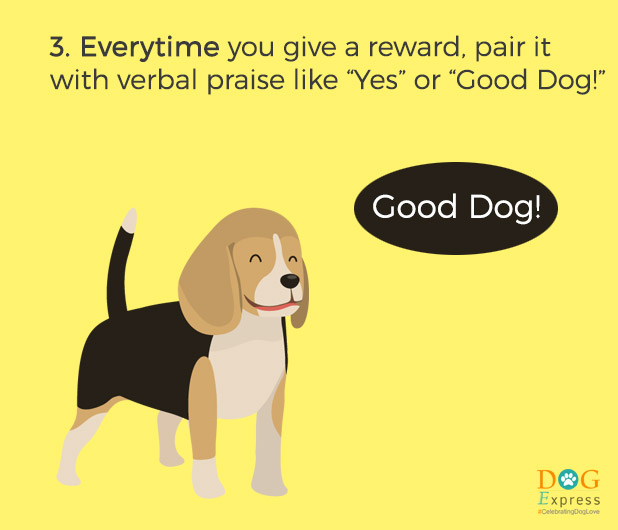 Dog-training-tips-3