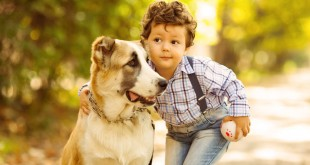how kids should intereact with dogs