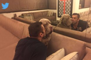 Salman Khan with his pet