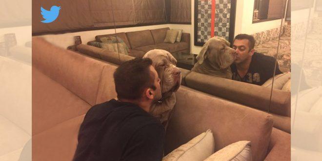Salman Khan with his pet