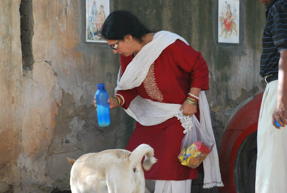 sulakshmi-dasgupta-feed-dog-3