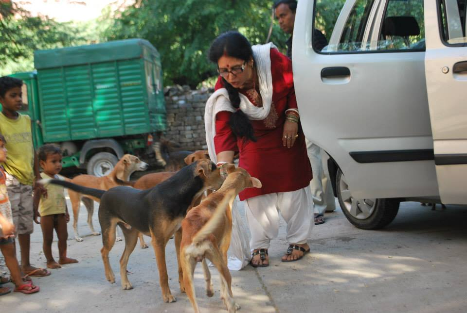 sulakshmi-dasgupta-feed-dog-4