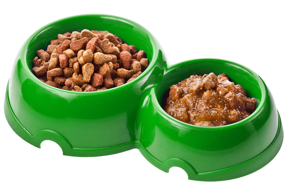 Best dog food_3