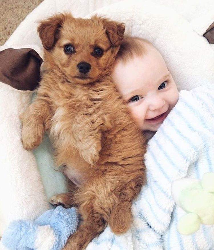 Cute Babies and puppies_2