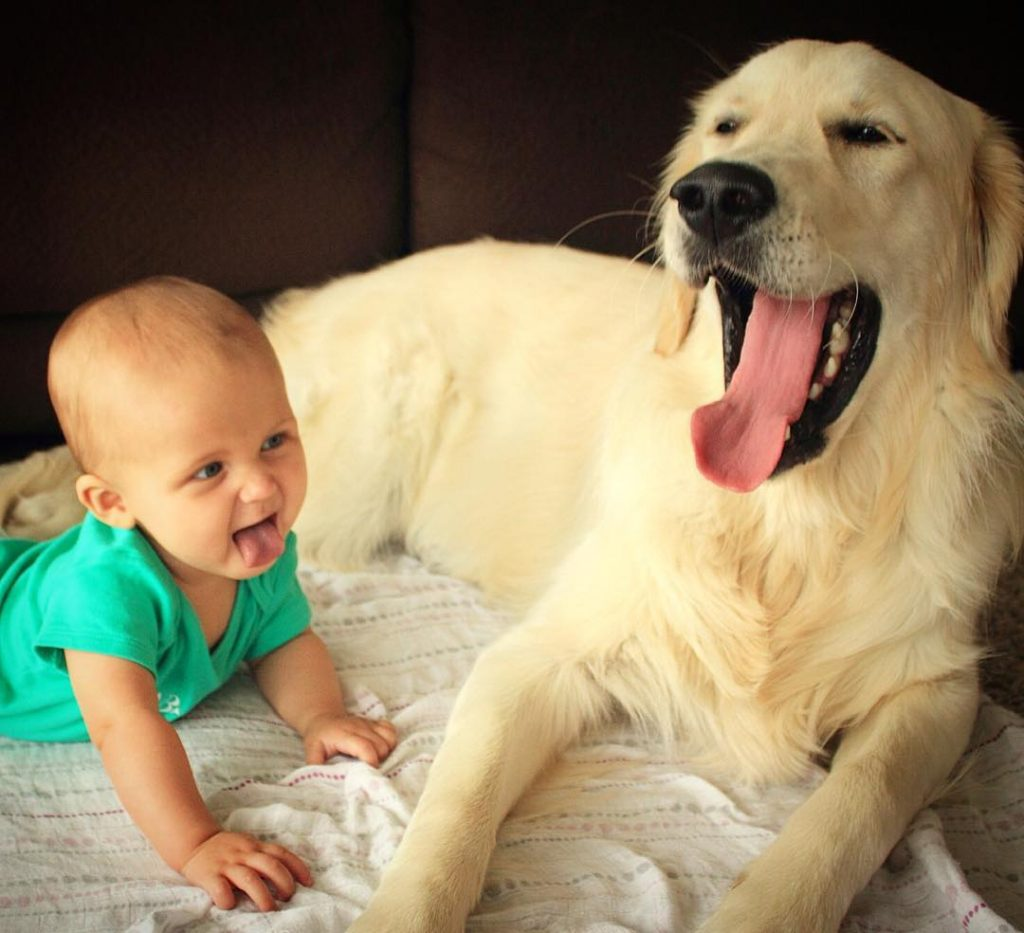 Cute Babies and puppies_5