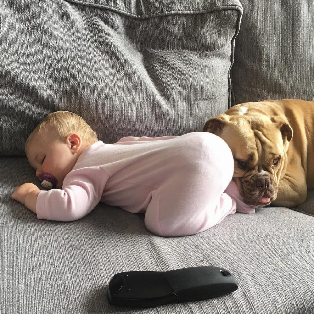 Cute babies and puppies_7