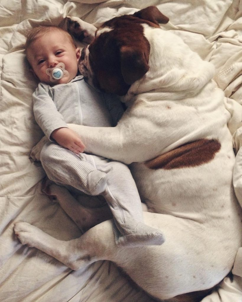 Cute Babies and puppies_9