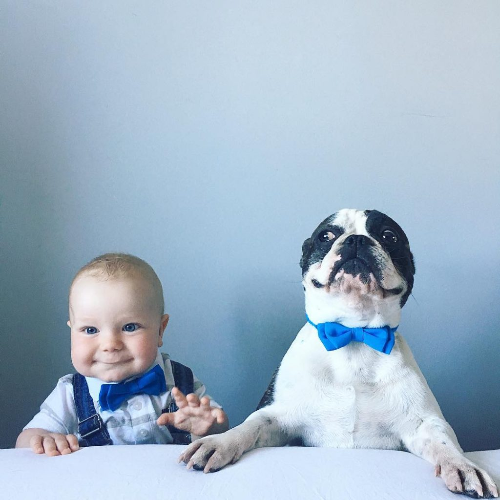 babies and puppies_13
