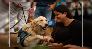 Therapy Dogs Improve Lives of People with Mental Illness