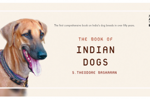 The Book of Indian Dogs