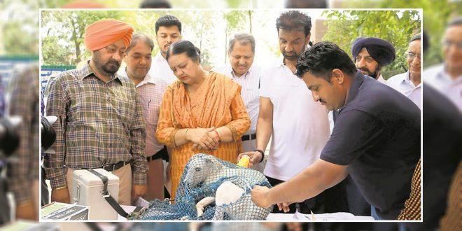 Chandigarh mayor organized an rabis vaccination camp