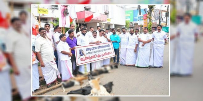 Kerala Municipal Members Apologize To Supreme Court For Culling Stray Dogs