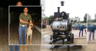 Dog cremation service