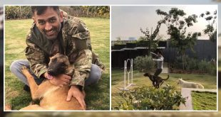 MS Dhoni with his pet dogs