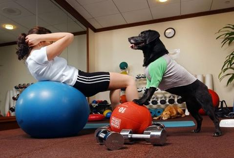 Workout inside with your dog