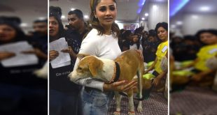 Daisy Shah Adopts An Indian Dog