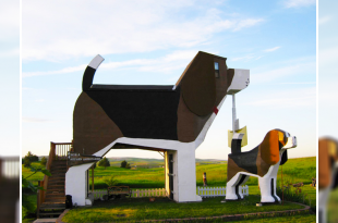 World bigguest dog house