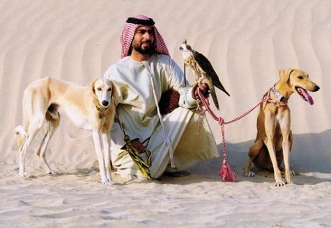 dog law in Saudi Arabia