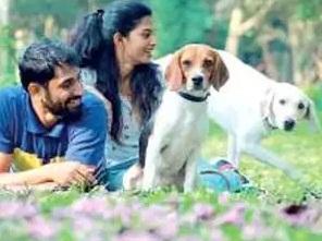 Feagles Dog find a new home in Bengaluru
