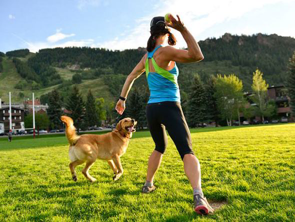 Exercise wisely your dog