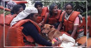 Kerala dog rescue