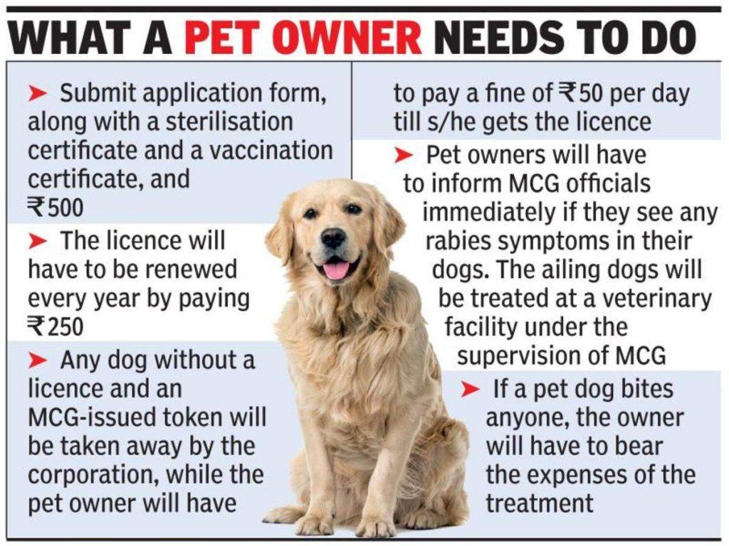Dog licence Gurugram